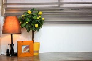 Naturalna wentylacja pomieszczeń